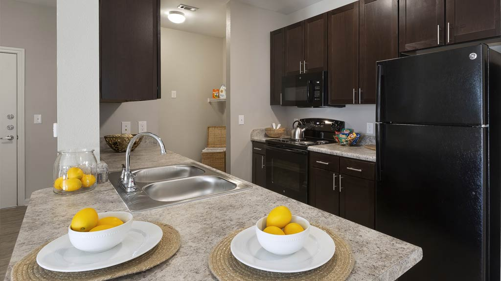 Buffalo Trail Apartment kitchen